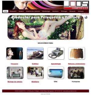 web_profesional_reus_joomla
